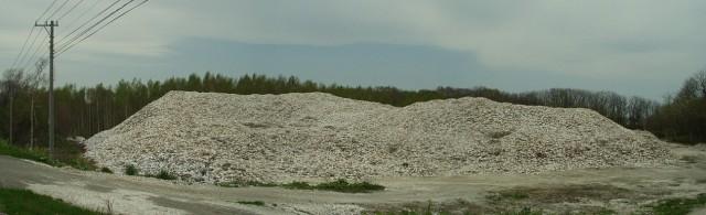ホタテ貝殻の廃棄の山
